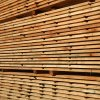 Sawn lumber KD from Argentina