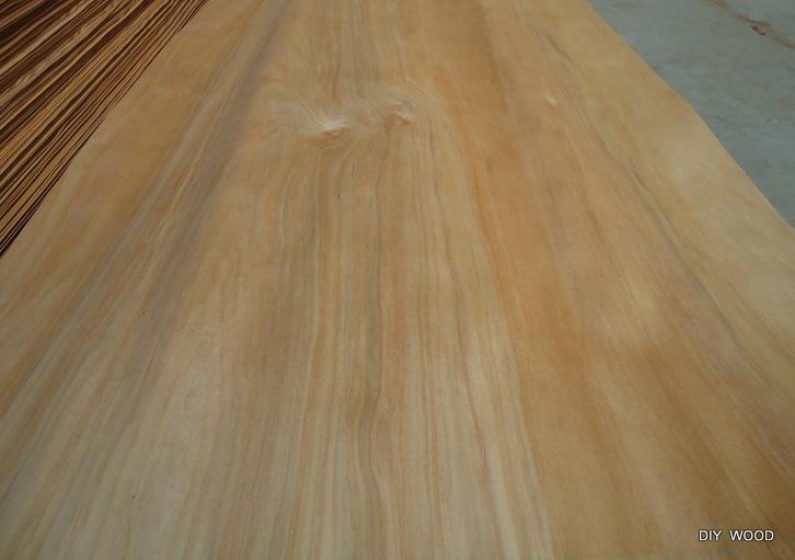 Agathis Sawn Timber ~ Offer sapele veneer bintangor agathis