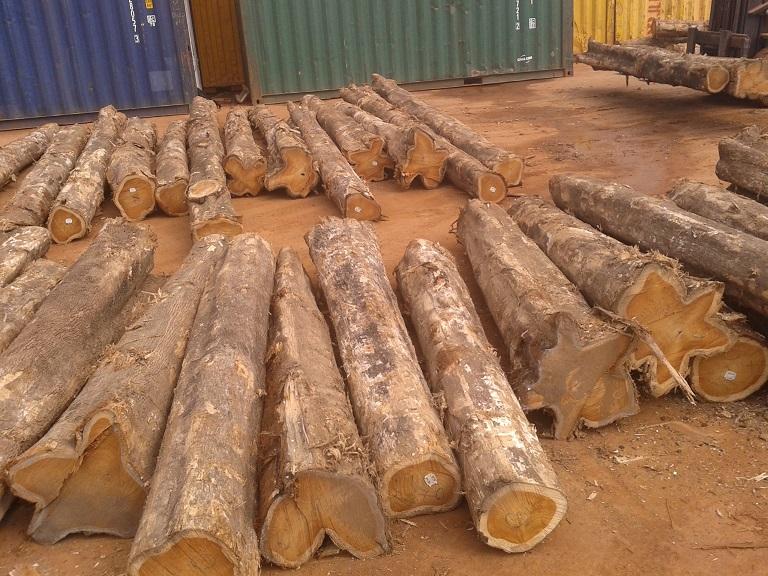 Offer Sawn log teak