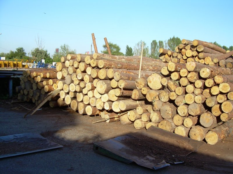 Offer pine logs and lumber boards timber for sale wood for Timber decking for sale